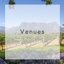 winelands wedding venue